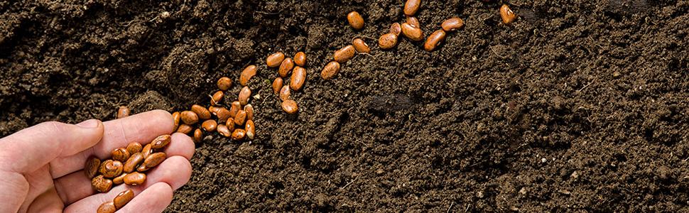 sementeira-comercial-agricola-portada-0